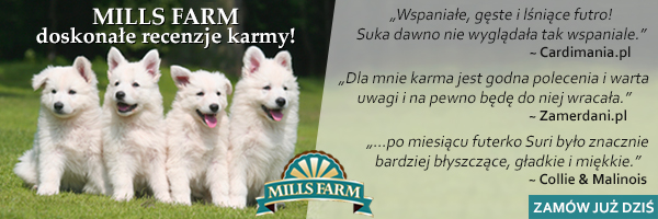 (M) Mills Farm 11-08-2016